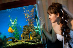 Bride watches fishes in aquarium Royalty Free Stock Images
