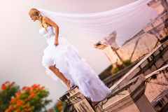 Bride wearing in beautiful dress and veil Stock Images