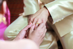 Bride wearing ring on groom's finger Royalty Free Stock Image