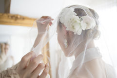 Bride wearing a veil Royalty Free Stock Image