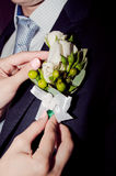The bride wears a boutonniere  groom Stock Images