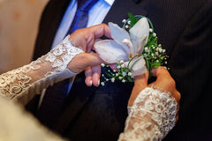 The bride wears a groom boutonniere Royalty Free Stock Photo