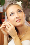 Bride wears jewelry Stock Images