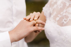 Bride wears a wedding ring on the groom Royalty Free Stock Image
