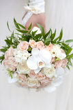 Bride with a wedding bouquet. The bride with a wedding bouquet Royalty Free Stock Photography
