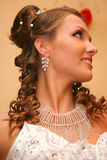 Bride in wedding dress Stock Photos