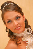 Bride in wedding dress Stock Images