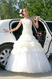 Bride in wedding dress. Bride poses in wedding dress Stock Images