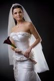Bride in wedding dress Royalty Free Stock Image