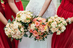 Bride in wedding dress and bridesmaids red dressing holding Wedd Royalty Free Stock Photo