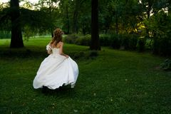 Bride in wedding dress concept Royalty Free Stock Photography