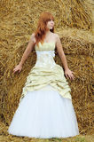 Bride in wedding dress in a field Stock Images