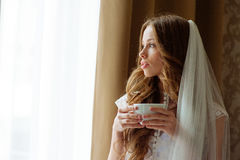 Bride in wedding dress at luxurious suites. Bride in a luxury apartment in a wedding dress. Royalty Free Stock Images