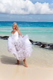 The bride in a wedding dress on an ocean coast Stock Image