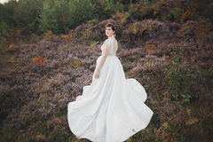 Bride in wedding dress posing on grass with beautiful landscape background Stock Images
