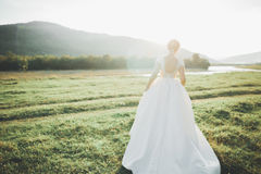 Bride in wedding dress posing on grass with beautiful landscape background Royalty Free Stock Images