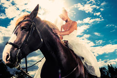 Bride in wedding dress riding a horse, backlit. Young Bride in wedding dress riding a horse, backlit picture, dreamy mood royalty free stock image