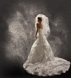 Bride in Wedding Dress with Veil, Fashion Bridal Beauty Portrait Stock Photography