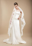 Bride in Wedding Dress and Veil Royalty Free Stock Photography