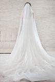 Bride in wedding luxury dress, back view. Stock Image
