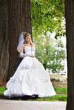 Bride in wedding stroll Stock Images