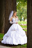 Bride in wedding stroll royalty free stock photography