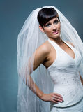 Bride in wedding veil Royalty Free Stock Photo