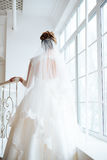 Bride in white dress backs to the camera. 1 royalty free stock images