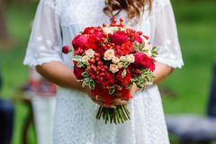 Bride in white dress holding in hands delicate, expensive, trendy bridal wedding bouquet of flowers in marsala and red colors. Clo. Se up, top view Stock Photo