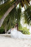 A bride in a white dress is riding on a swing under a big palm tree. Wedding on a tropical island stock photo