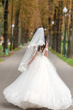 Bride in white dress is spinning in an alley in the park Royalty Free Stock Photos
