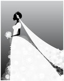 Bride in white dress. Vector illustration of a bride in white dress Stock Photo