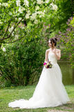 Bride in white dress, wedding, attractive woman. Nature Royalty Free Stock Image