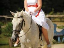 Bride on White Horse Royalty Free Stock Photos