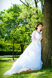 Bride in white. At the park near a tree. Royalty Free Stock Photos