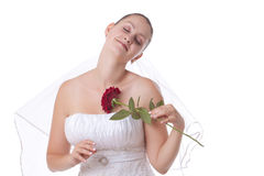 Bride in white with red rose Royalty Free Stock Images