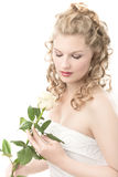 Bride with white rose Stock Photography