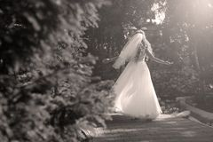 Bride doing pirouette in the park. Bride with white wedding dress doing a pirouette in the park Royalty Free Stock Images