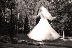 Bride doing pirouette in the park. Bride with white wedding dress doing a pirouette in the park, green alley Royalty Free Stock Photos