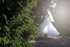 Bride doing pirouette in the park. Bride with white wedding dress doing a pirouette in the park, green alley Stock Photography