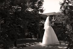 Bride doing pirouette in the park. Bride with white wedding dress doing a pirouette in the park, green alley Royalty Free Stock Photo