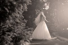 Bride doing pirouette in the park. Bride with white wedding dress doing a pirouette in the park, green alley Royalty Free Stock Photography