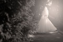 Bride doing pirouette in the park. Bride with white wedding dress doing a pirouette in the park, green alley Stock Image