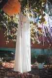 Bride white wedding dress hanging in a tree Stock Photos