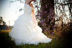 Bride White Wedding Dress Outdoors Green Grass Wisteria Vines Royalty Free Stock Photos