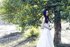 A bride with white wedding dress stand in the middle of trees Stock Images
