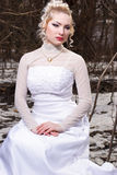 Bride in the winter forest Stock Image