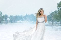 Bride in the winter forest. Fashionable model girl in wedding dress posing in winter forest. Snowing Royalty Free Stock Images