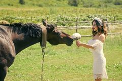 Bride woman give flower bouquet to horse. Bride woman in wreath and white sexy dress give flower bouquet to horse on natural background. Wedding day concept Royalty Free Stock Photo