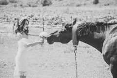 Bride woman give flower bouquet to horse. Bride woman in wreath and white sexy dress give flower bouquet to horse on natural background. Wedding day concept Stock Photo